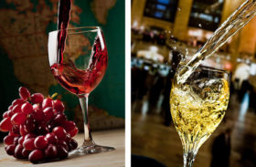Red vs White wines