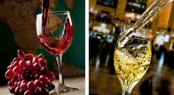 Red vs White wines