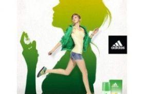 Designer Brands vs Store Brands