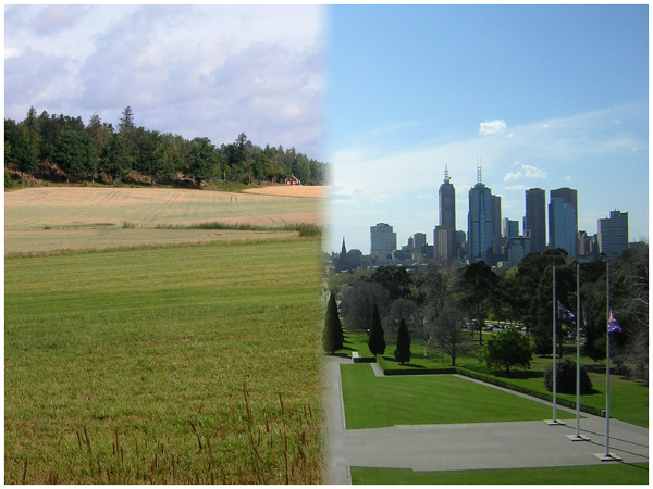 country life vs city life compare Country life vs city life essay anti essays living in city or in country, which one will you choose i think the most important decision to a happy life.
