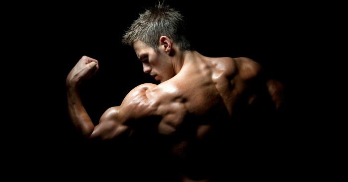 casein-or-whey-protein