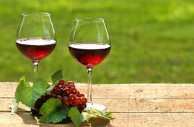 Merlot or Cabernet: Which Taste Do You Prefer?