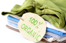 Bamboo Vs. Organic Cotton: Who Wins the Clash of Natural Fabrics?