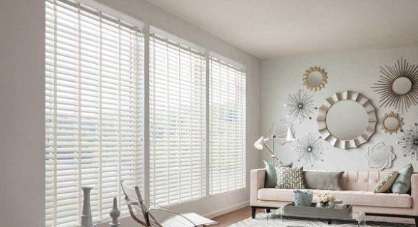 Window Treatments: Blinds Vs. Shades
