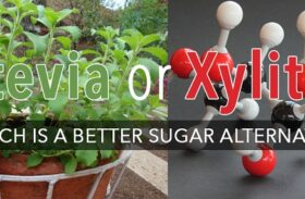 The Battle of the Sweeteners: Stevia vs Xylitol