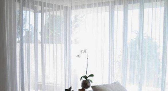 Who Wins the Battle: Blackout Vs. Transparent Curtains for Windows