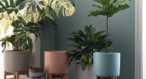 Urban Gardening Dilemmas: the Pros & Cons of Self-Watering Modern Planters