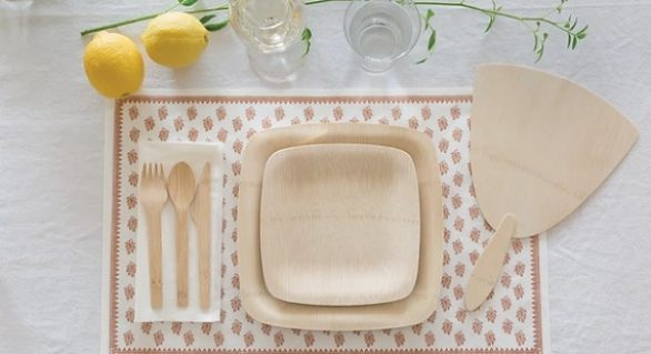 Comparing the Different Types of Eco-Friendly Disposable Plates