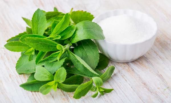 Stevia, the Healthy Sugar Alternative: Buy in Bulk or Not?