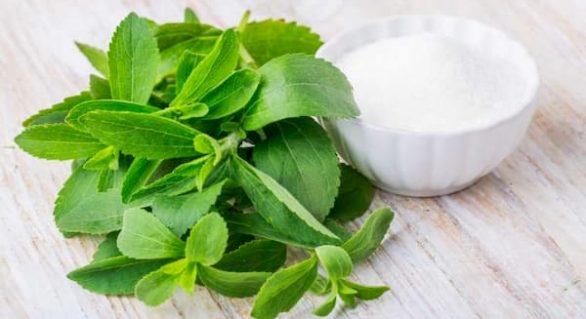 Stevia, the Healthy Sugar Alternative: Buy in Bulk or Not?
