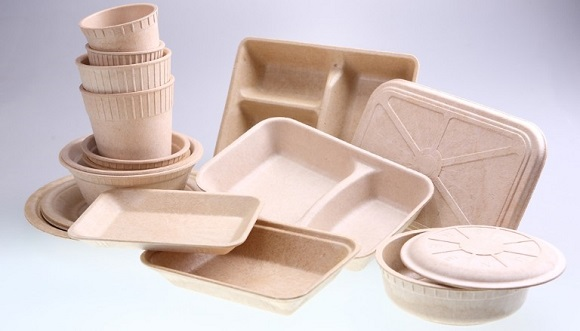 Bamboo-Disposable-Containers