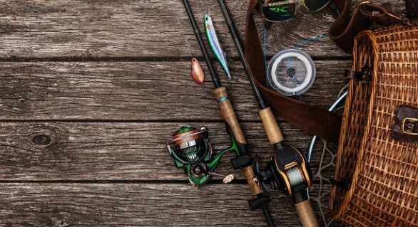 Spinning vs Casting Rods: How to Choose the Ideal Fishing Rod
