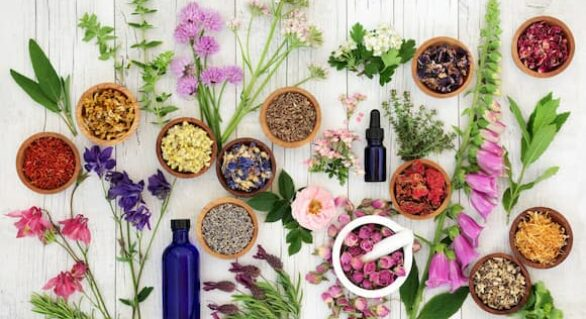 Comparing Different Essential Oils and Their Benefits: Myths or Facts?