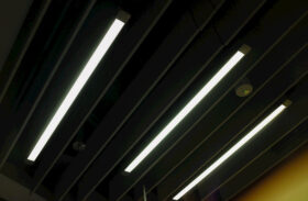 LEDs vs. Incandescent Lights: What's the Best Option for Homes?