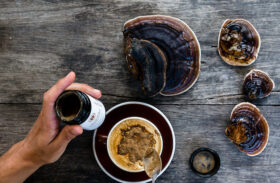 SuperFeast Mushroom Supplements: A True Medicinal Powerhouse