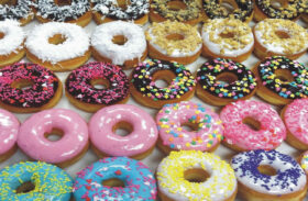 Donut vs Ice Cream Shop: Which is the Best Business to Start